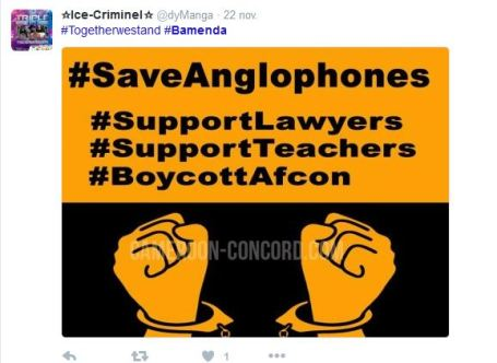 hashtag-cameroun-twitter-2016-36