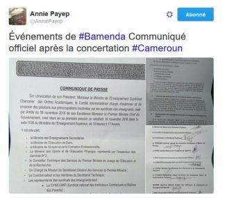 hashtag-cameroun-twitter-2016-37