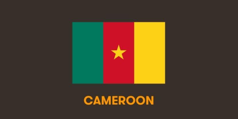 Le digital au Cameroun en 2018