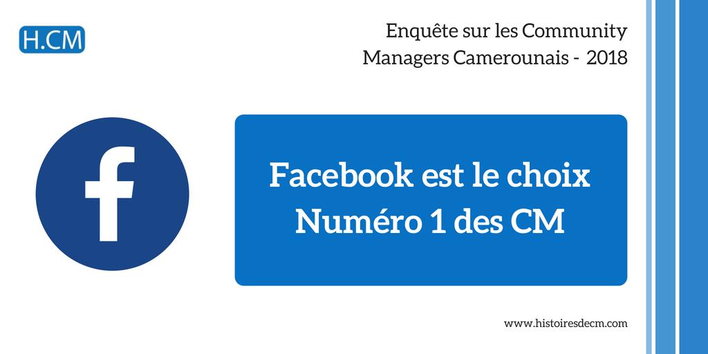 Enquête Community Manager Cameroun 2018 (11)