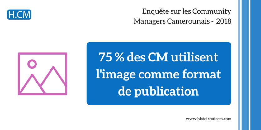 Enquête Community Manager Cameroun 2018 (13)