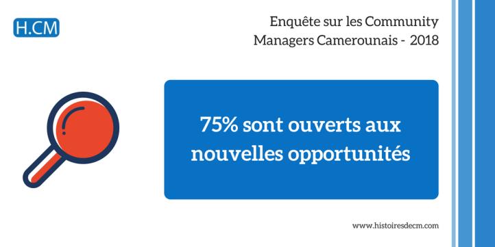 Enquête Community Manager Cameroun 2018 (3)