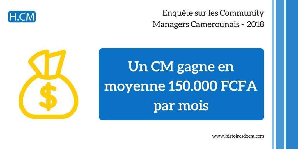Enquête Community Manager Cameroun 2018 (9)